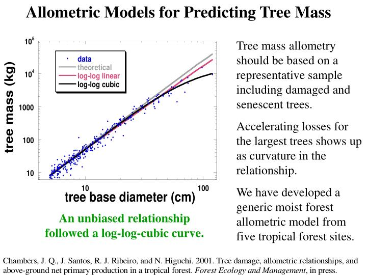 Allometric Models for Predicting Tree Mass