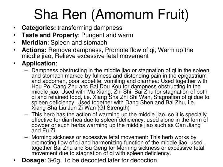 Sha Ren (Amomum Fruit)