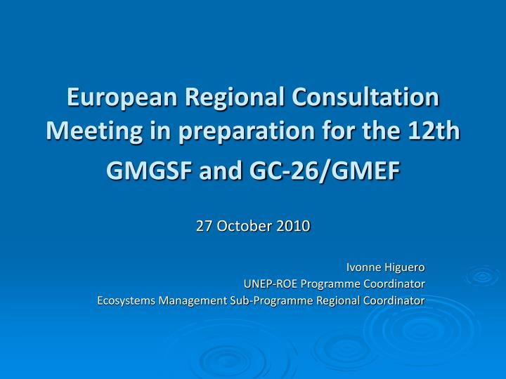 European Regional Consultation Meeting in preparation for the 12th GMGSF and GC-26/GMEF