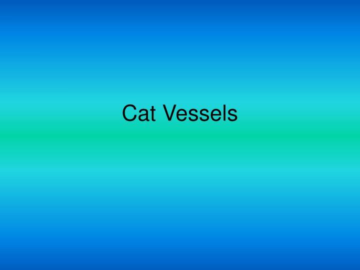 Cat Vessels