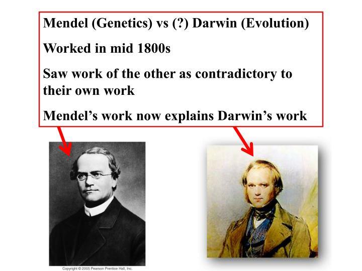 Mendel (Genetics) vs (?) Darwin (Evolution)