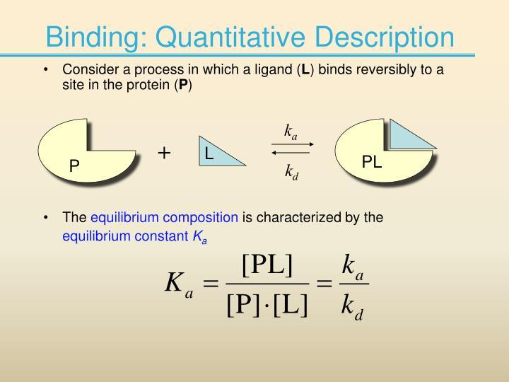 Binding: Quantitative Description