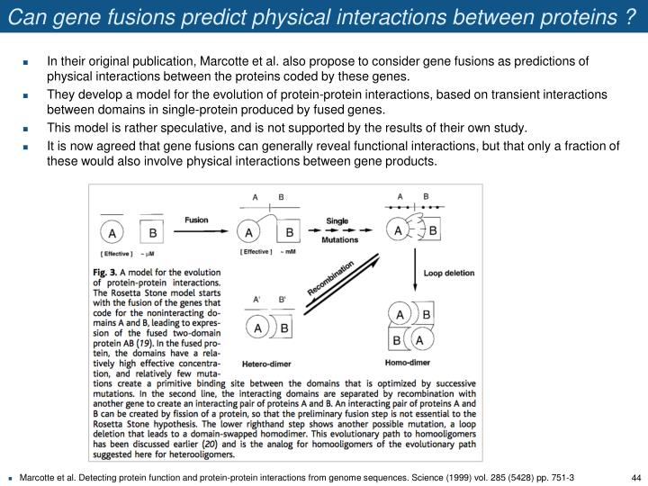 Can gene fusions predict physical interactions between proteins ?