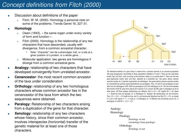 Concept definitions from Fitch (2000)