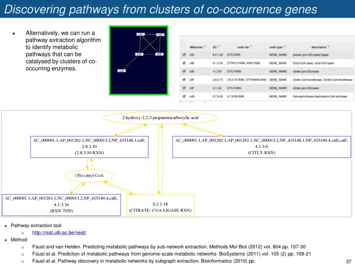 Discovering pathways from clusters of co-occurrence genes