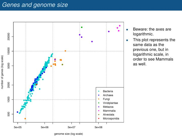 Genes and genome size