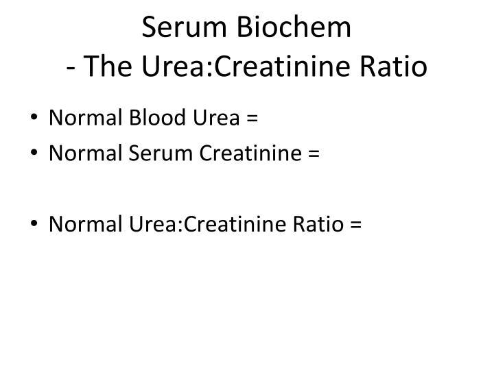 Serum Biochem
