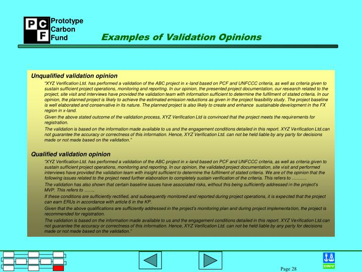 Examples of Validation Opinions
