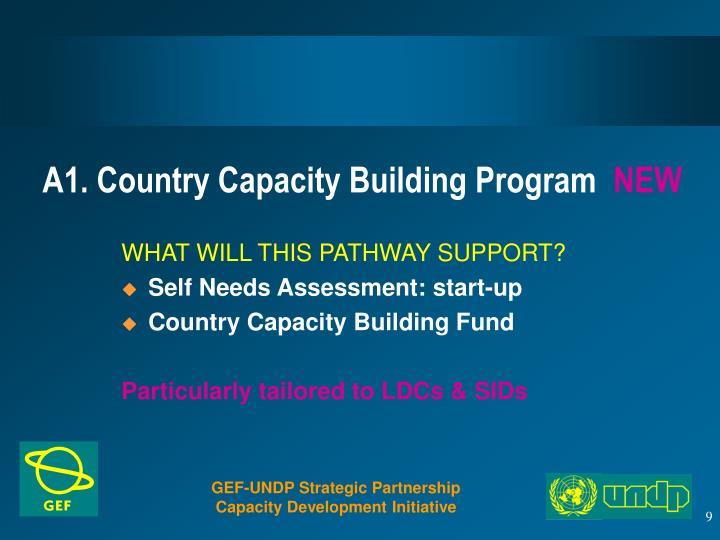 A1. Country Capacity Building Program