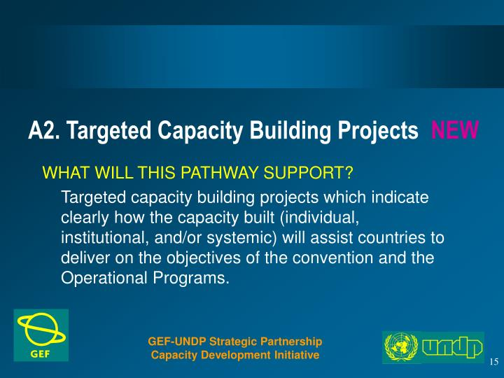 A2. Targeted Capacity Building Projects