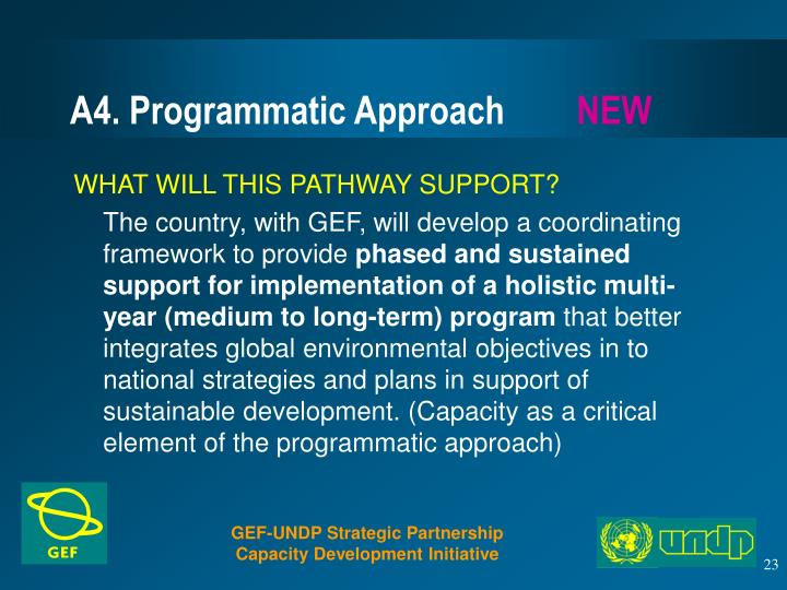 A4. Programmatic Approach