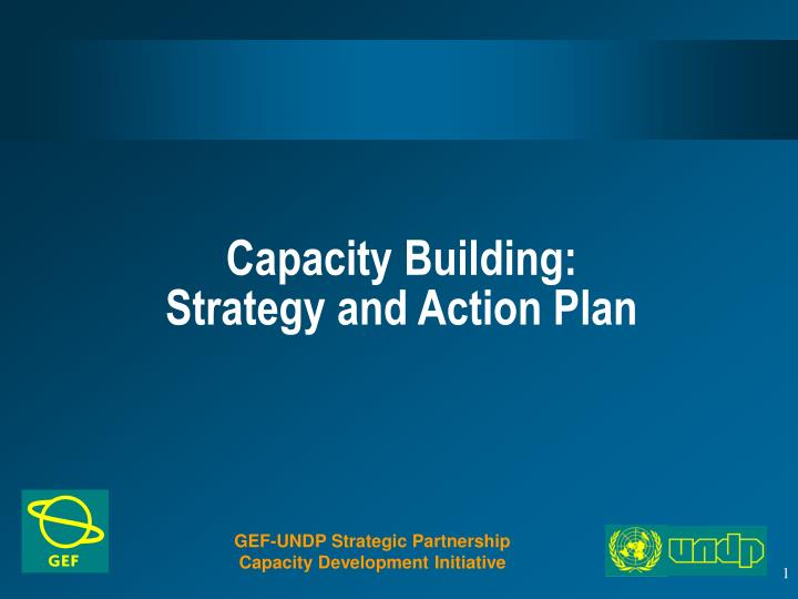 Capacity building strategy and action plan