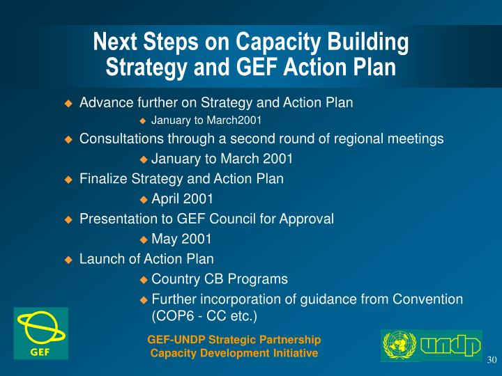 Next Steps on Capacity Building