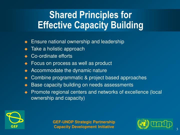 Shared principles for effective capacity building