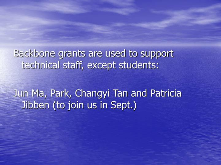 Backbone grants are used to support technical staff, except students: