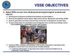 vsse objectives