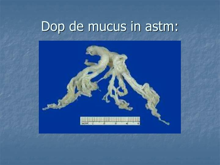 Dop de mucus in astm: