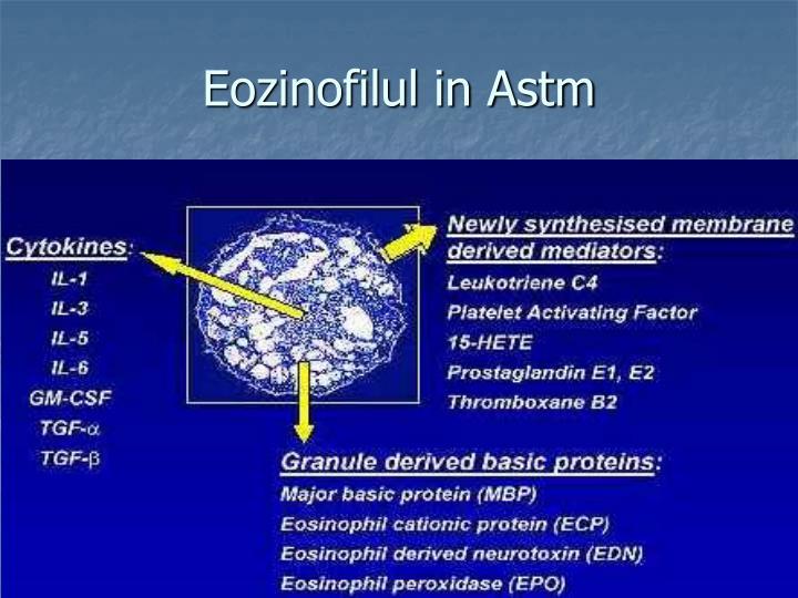 Eozinofilul in Astm