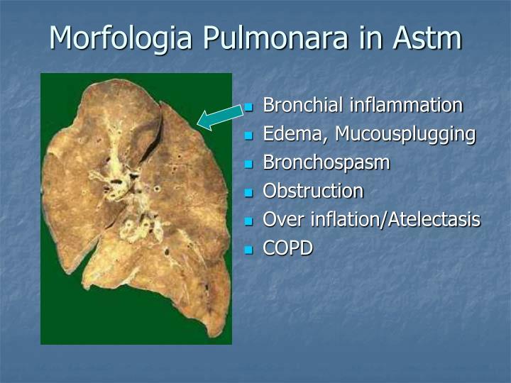 Morfologia Pulmonara in Astm