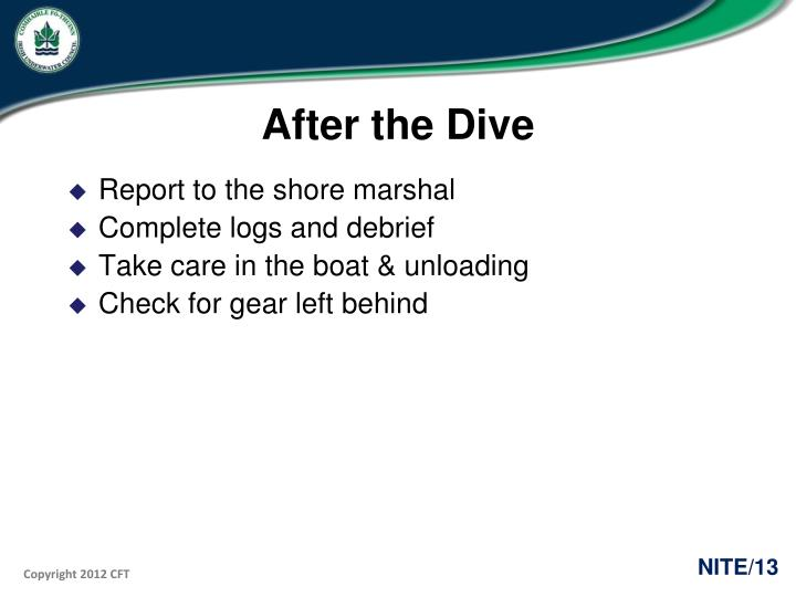 After the Dive