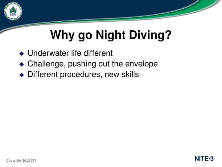 Why go Night Diving?