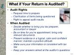 what if your return is audited1