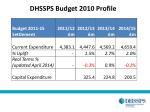 dhssps budget 2010 profile