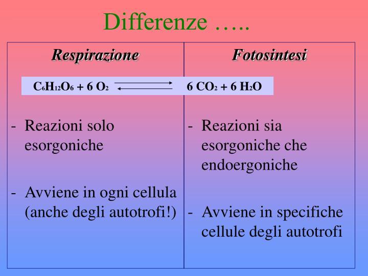 Differenze …..