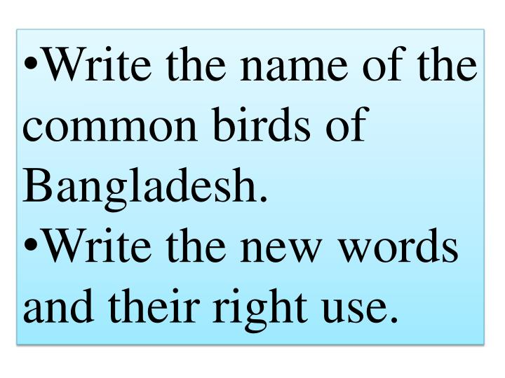 Write the name of the common birds of Bangladesh.