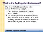 what is the fed s policy instrument1