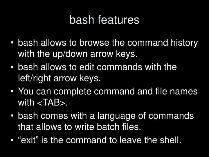 bash features