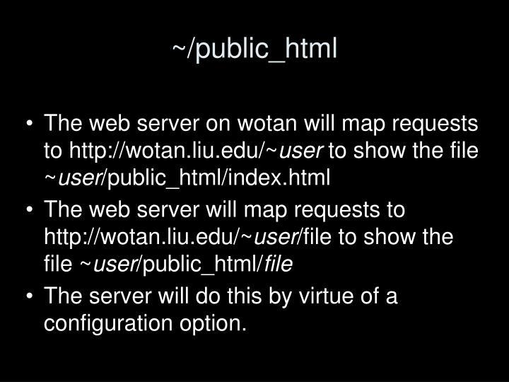 ~/public_html