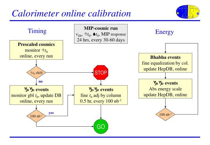 Calorimeter online calibration