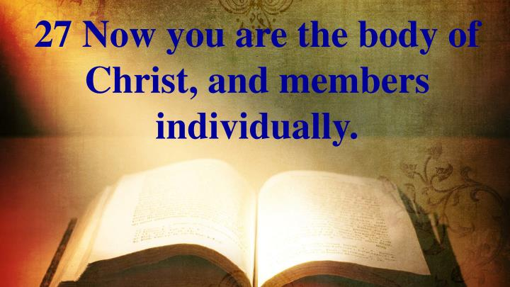 27 Now you are the body of Christ, and members individually