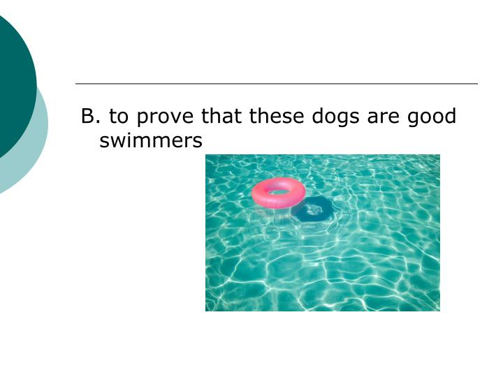 B. to prove that these dogs are good swimmers