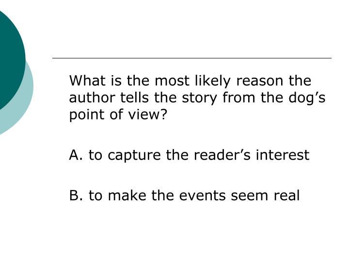 What is the most likely reason the author tells the story from the dog's point of view?