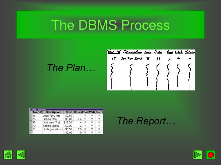 The DBMS Process