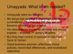 umayyads what islam needed