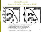 charged hadrons in central auau collisions at rhic