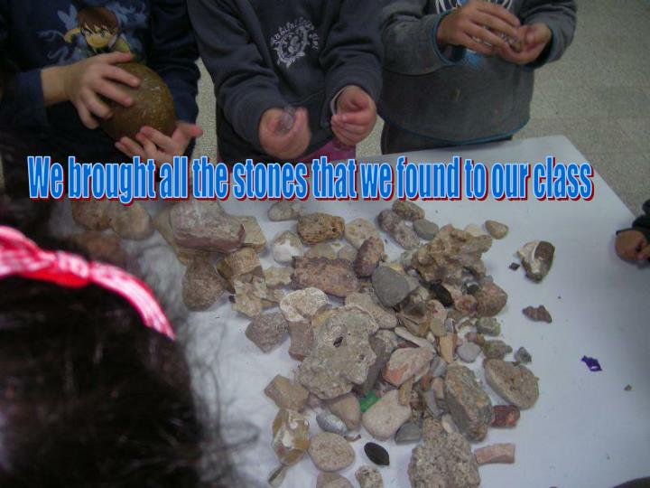 We brought all the stones that we found to our class