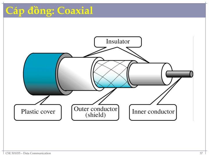 Cáp đồng: Coaxial