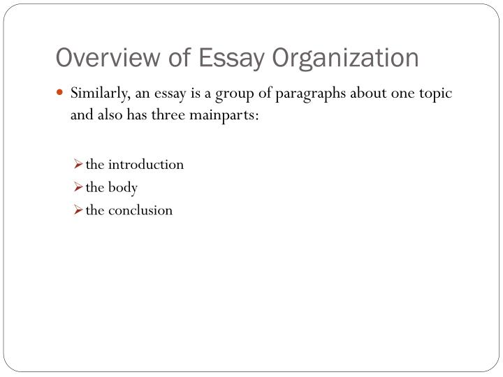 Overview of essay organization1