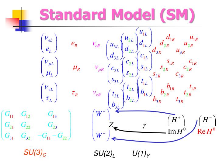 Standard Model (SM)