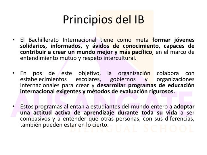 Principios del IB