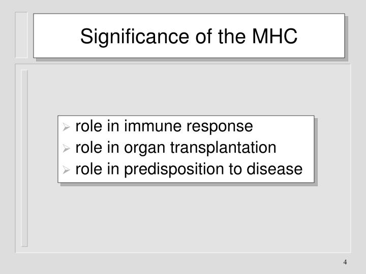 Significance of the MHC