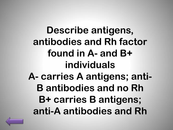 Describe antigens, antibodies and Rh factor found in A- and B+ individuals