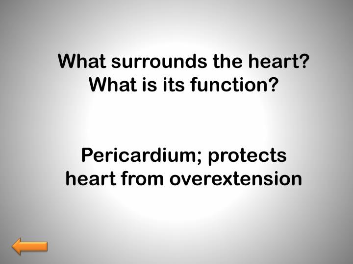 What surrounds the heart?  What is its function?