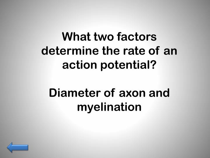 What two factors determine the rate of an action potential?