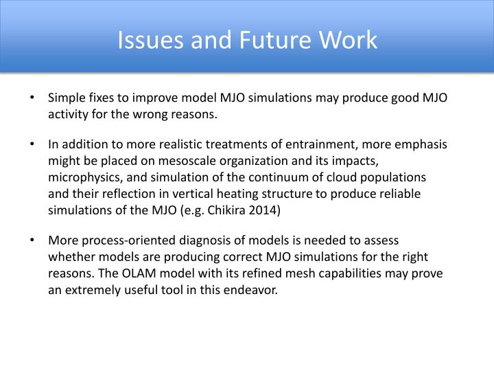 Issues and Future Work