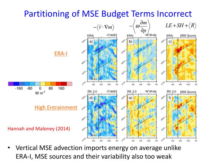 Partitioning of MSE Budget Terms Incorrect